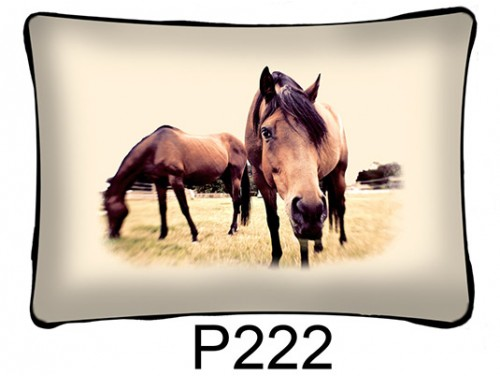 (P222) Párna 37 cm x 27 cm - Selfie ló - Lovas ajándékok