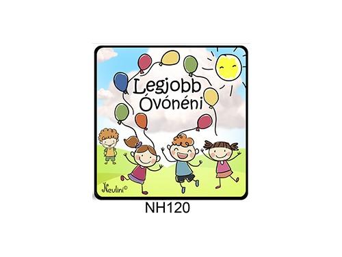 (NH120) Hűtőmágnes 7,5 cm x 7,5 cm - Legjobb óvónéni - Ajándék Óvónőknek