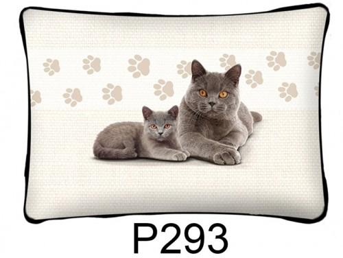 (P293) Párna 37 cm x 27 cm - Brit macska - Macskás ajándékok