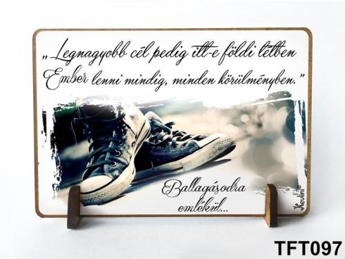 (TFT097) Kis fa tábla 11 cm x 7,5 cm - A legnagyobb cél – Ballagási ajándék