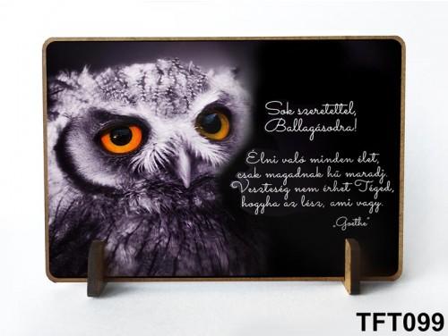 (TFT099) Kis fa tábla 11 cm x 7,5 cm - Élni való minden élet – Ballagási ajándék